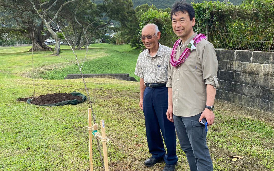 Photos: The ceremony of Sakura seeds planted at Manoa Valley Districted Park